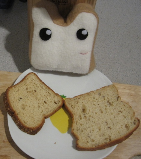 Plushie bread is happy because he is made of felt, and not gluten.