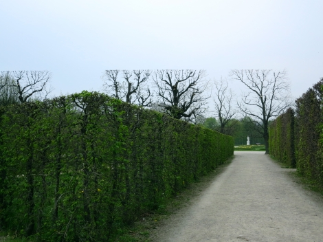 No, that's not a crop job: the trees are just trimmed that way in the Schönbrunn Palace's gardens.