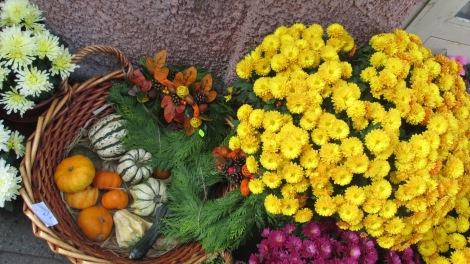 Fall flowers and autumn gourds for sale, Hradec Králové.