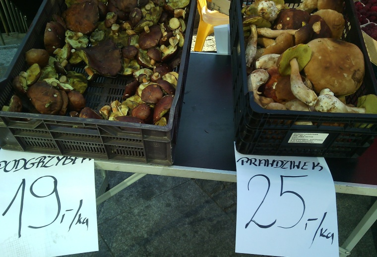 Two different kind of wild mushrooms for sale— note the names.