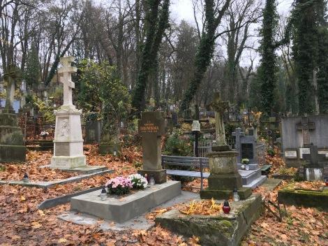 Lychakiv Cemetery in Lviv.